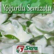 Yoğurtlu Semizotu