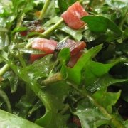 Radfika Salatası