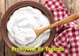 Probiyotik Ev Yoğurdu